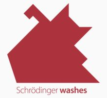 Schrödinger washes by Zern Liew
