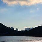 Light & Shadow - Hong Kong. by Tiffany Lenoir