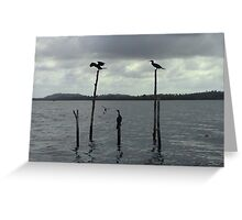 Meeting Place in Sri Lanka Greeting Card