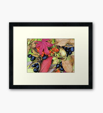Fall Collage Framed Print