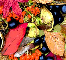 Autumn Colour Collage by grandaded