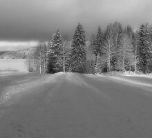 Winter light by Annika Strömgren