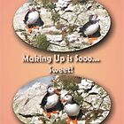 Puffins making up by Sam Hanie