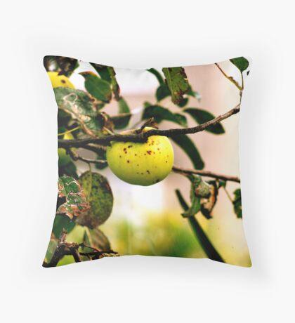 apple in tree Throw Pillow