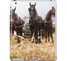 Work horses iPad Case/Skin