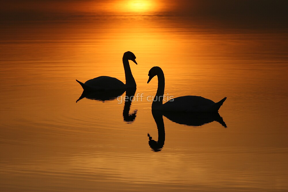 2 On Golden Pond  by geoff curtis