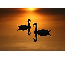 2 On Golden Pond  Photographic Print