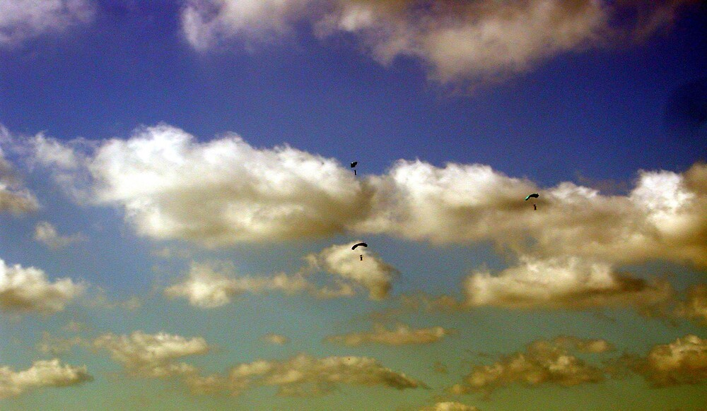 Skydivers by LizzyM