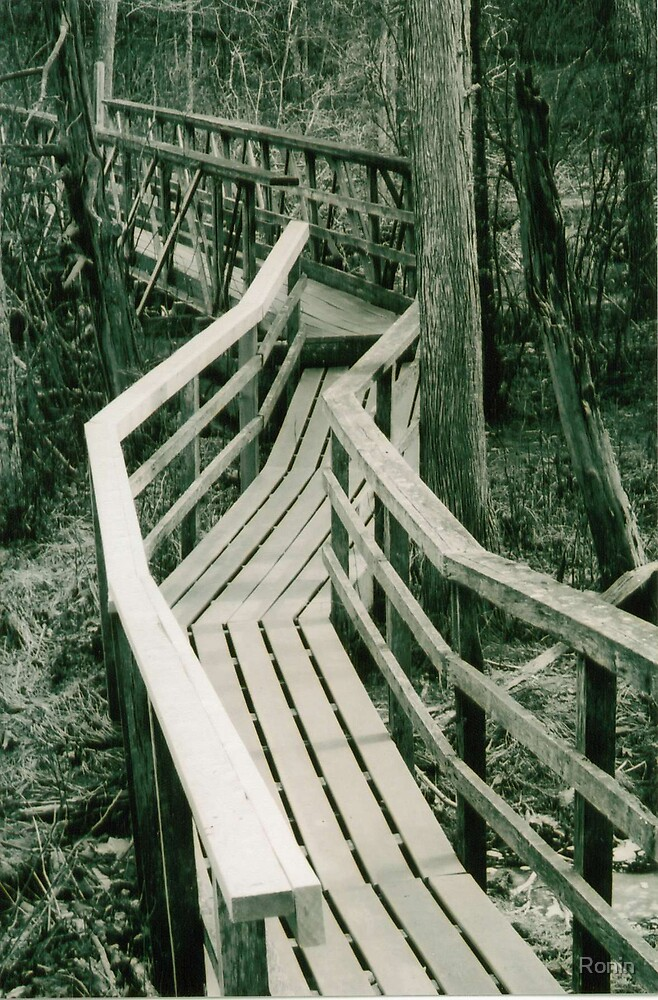 Bridge I by Ronin