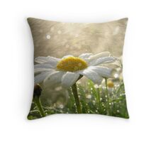 Daisies in the Mist Throw Pillow