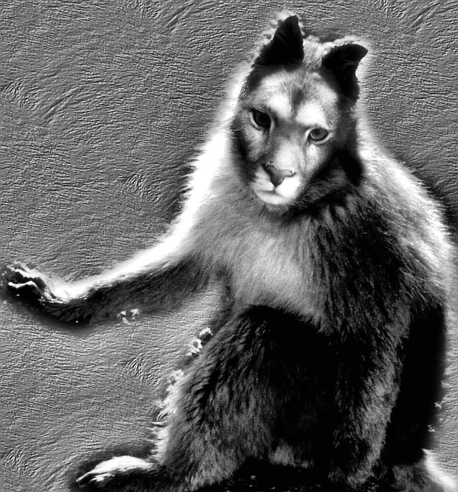 what animal am I? by CheyenneLeslie Hurst