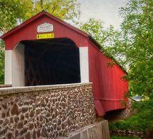Van Sandt Bridge I by Debra Fedchin