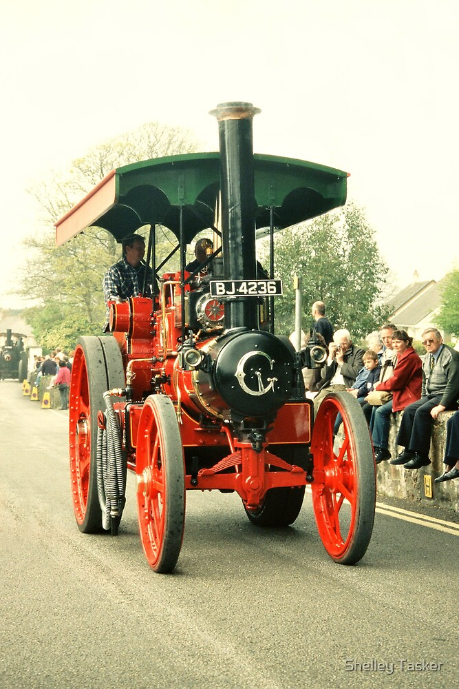 Trevithick Day in Cornwall by Shelley Tasker