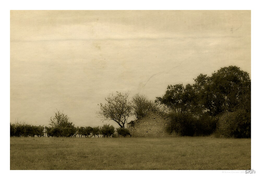 .: Good old farm :. by Sophie Cagnac