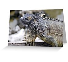 Brown Iguana Greeting Card