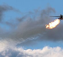 Dump & Burn F-111 by naemick