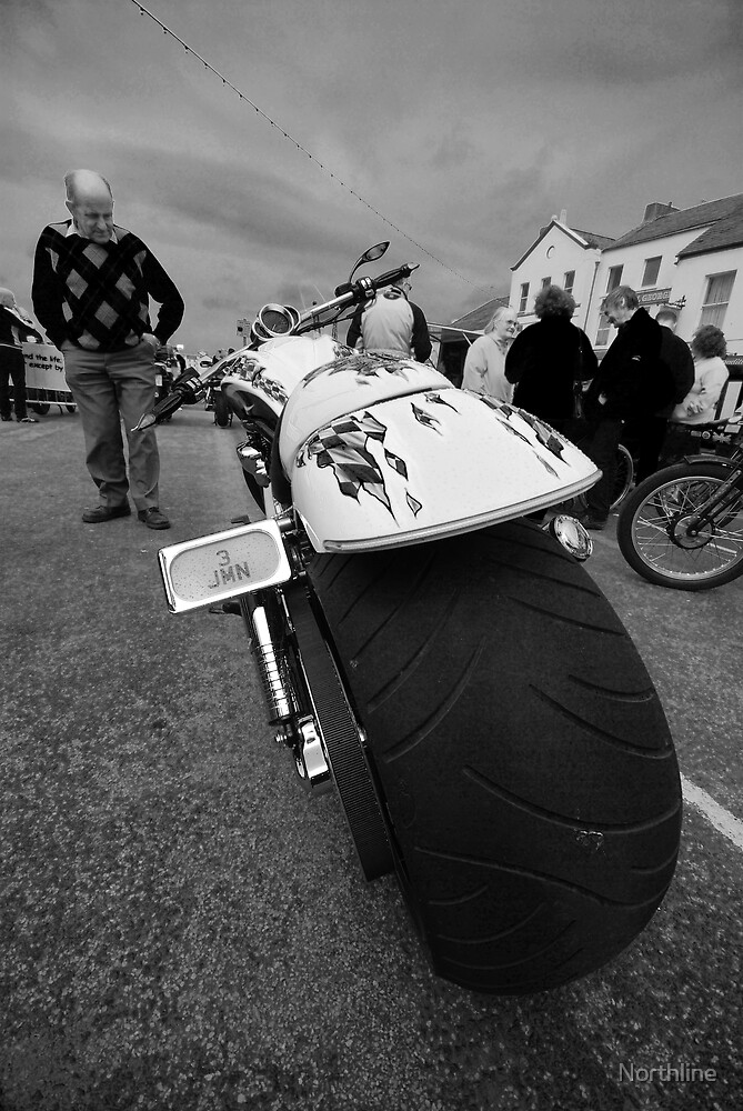 Born to be Wild by Northline