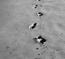 Footprints by LizzyM
