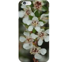 Otway 8 iPhone Case/Skin