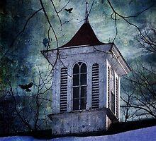 The Cupola by Debra Fedchin