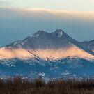 Twin Peaks Awaken by nikongreg