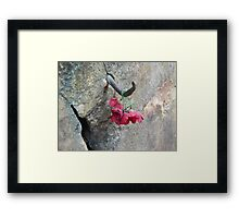Rememberance @ Hell Fire Pass - Thailand Framed Print