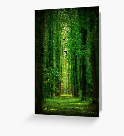 Towering Trees Greeting Card