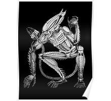 Alien - Xenoscorpial version Poster