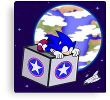 Hedgehogs in Space Canvas Print