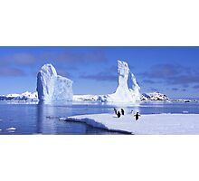 Penguins on Ice Photographic Print
