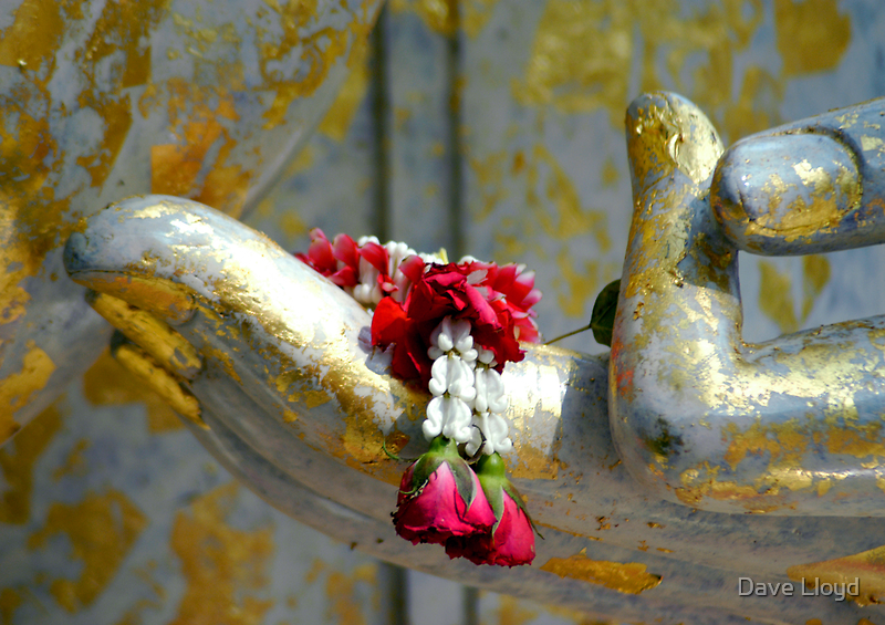 Hand And Garland by Dave Lloyd