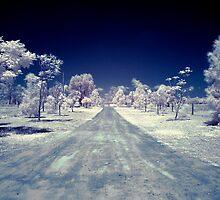 IR Drive by mattappel