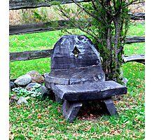 tree stump seating Photographic Print