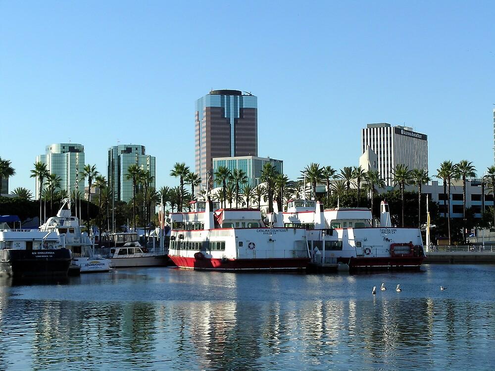 Long Beach Skyline by Dianna