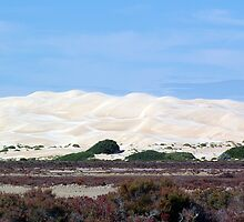 Blown Sand Dunes by Robyn Maynard