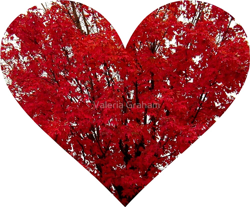 Red leaf heart pillow by Valeria Lee