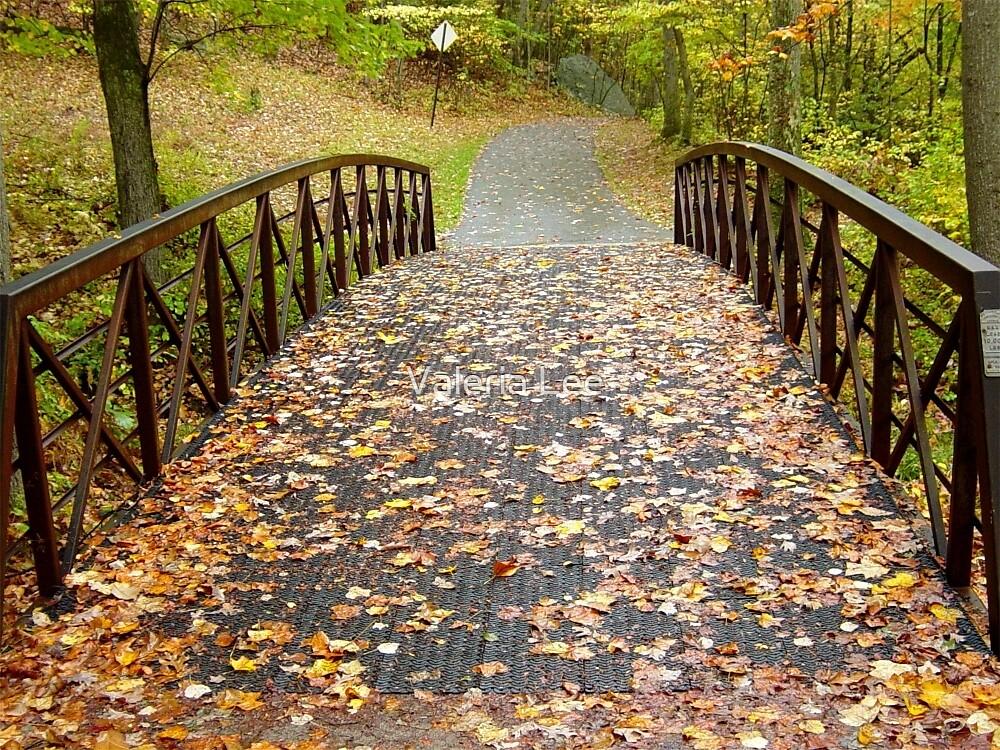 Autumn bridge by Valeria Lee