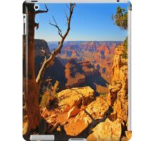 Nature`s Grand iPad Case/Skin