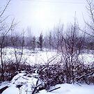Saskatchewan - Winter by RobertCharles