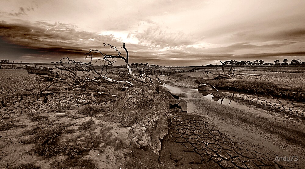 Lake Eppalock by Andy73