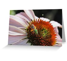 Mr. Green Bee Greeting Card