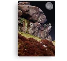 Third Rock Canvas Print