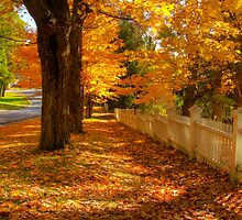 Golden Autumn Path by thewaterfallhunter