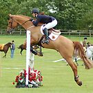 Showjumper by Phil Rowe