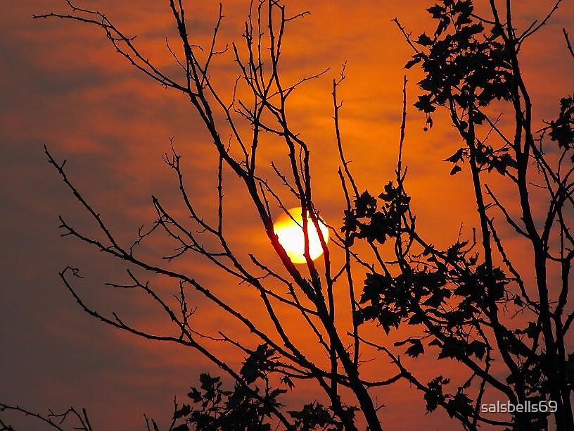 Bushfire Dawn 2 by salsbells69
