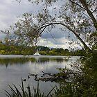 Vancouver - Lost Lagoon by RobertCharles