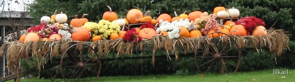 Harvest Wagon... by lilkarl