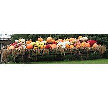 Harvest Wagon... Photographic Print