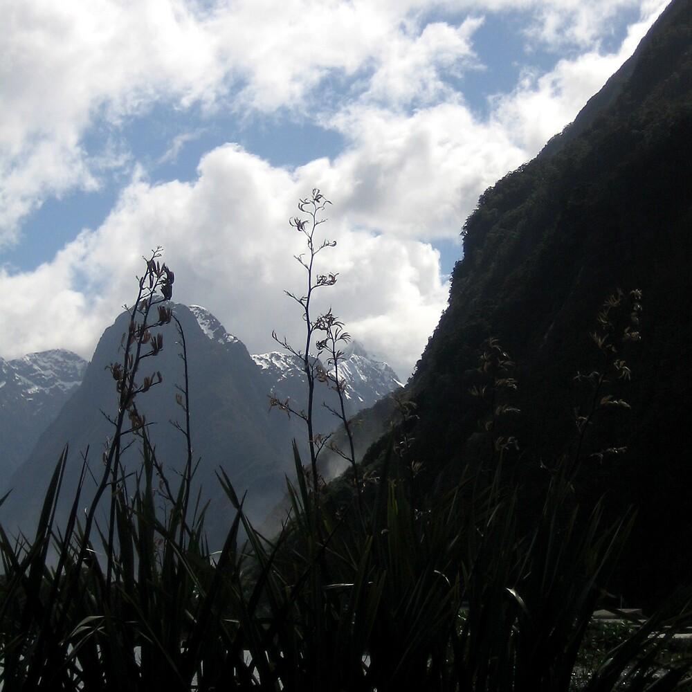 Milford Sound New Zealand by Danielle Murdoch