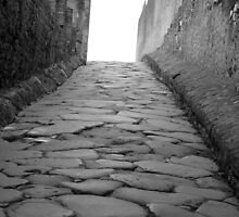 The Road to Pompeii by Karen Ashenberner